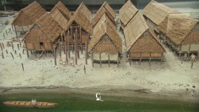 Il y a 3000 ans, les lacustres menaient une vie à la dure... [RTS]