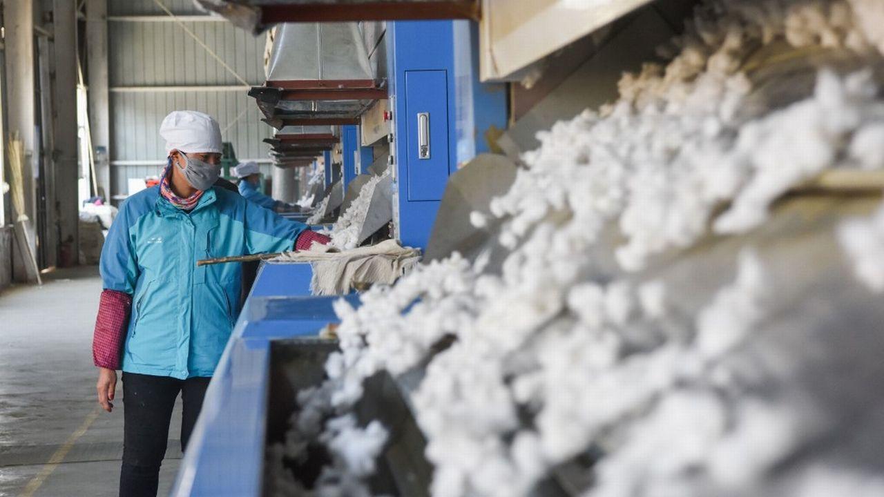 Un moulin à coton dans la province chinoise du Xinjiang (image d'illustration). [Ding Lei - Xinhua via AFP]