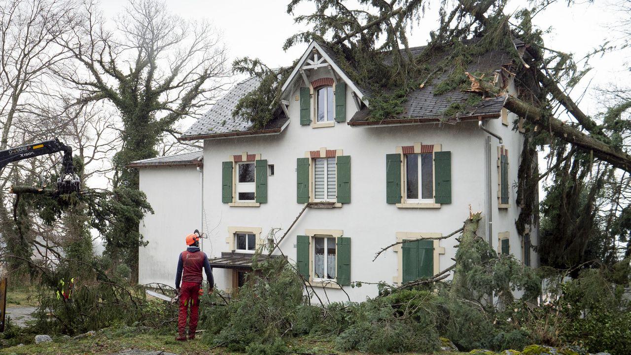 En février 2020, la tempête Sabine a fait des dégâts dans le Val-de-Ruz. [KEYSTONE/Laurent Darbellay - Keystone]