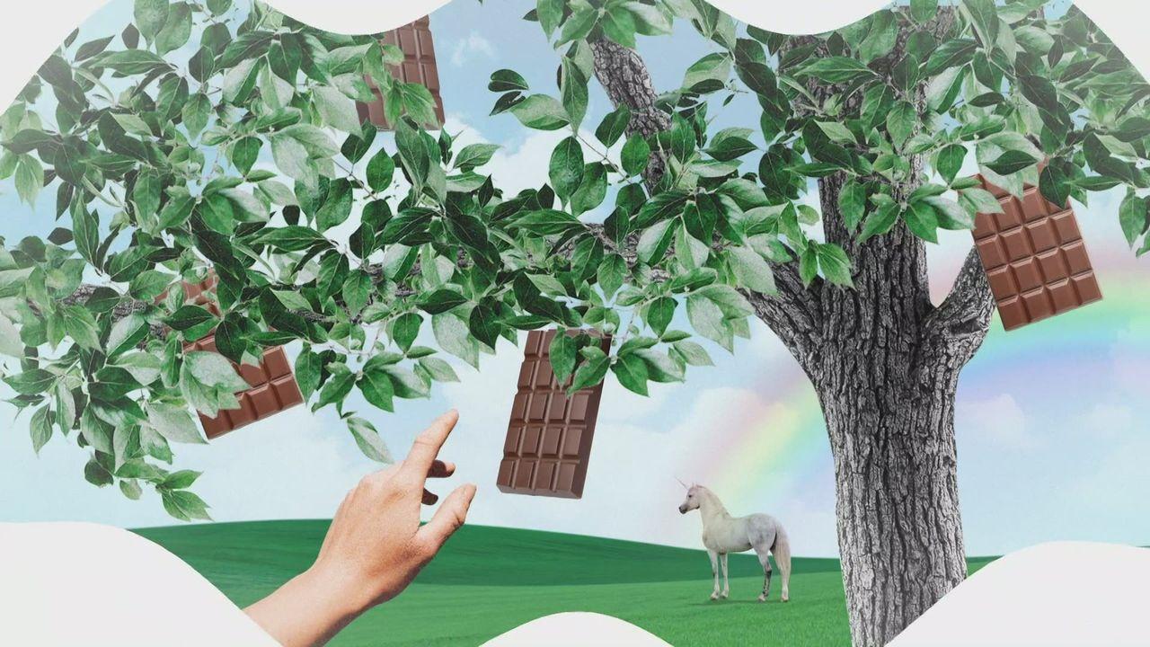 Comment ça pousse - Le cacao [RTS]