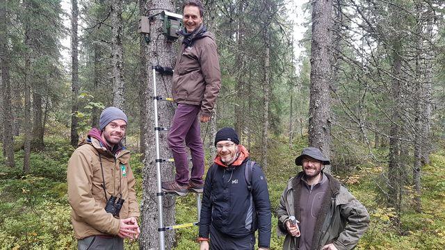 Immersion au cœur de la forêt du Risoux dans le Jura pour entendre toute sa biodiversité avec Jérôme Sueur, Frédéric Sebe, Julien Barlet et Sylvain Haupert. [Sarah Dirren - RTS]