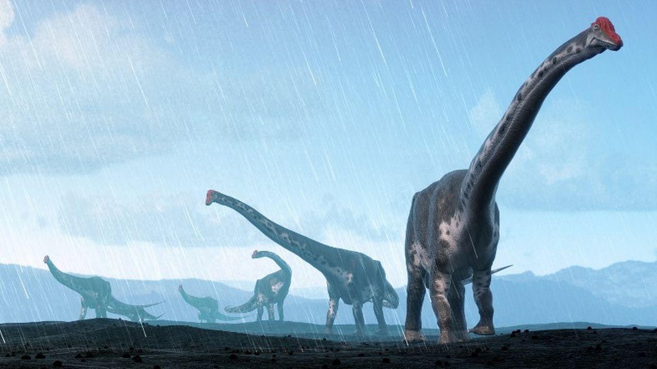 Une représentation d'artiste d'un titanosaure argentin. [Mark Garlik/Science Photo Library/MGA - AFP]