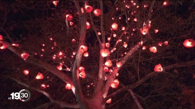 Geneva Lux Festival: 21 œuvres illuminent la cité de Calvin. [RTS]