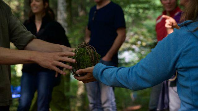 Formations et environnement: enseigner dans la nature, lʹécole de demain? [Fondation Silviva]