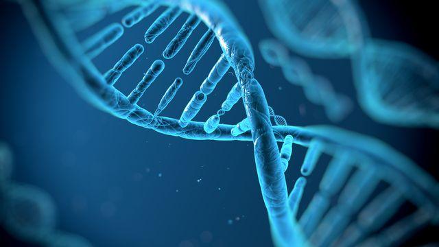 L'« ADN-poubelle » et les malformations congénitales. [vitstudio - depositphotos]