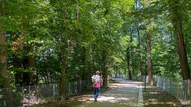 Le Bois de la Bâtie est secteur très appréciés des Genevois. [Ville de Genève]