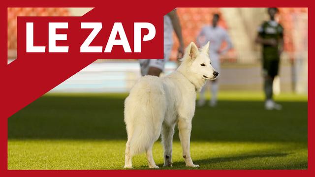 Le Zap RTS Sport 2021 #8 [RTS]