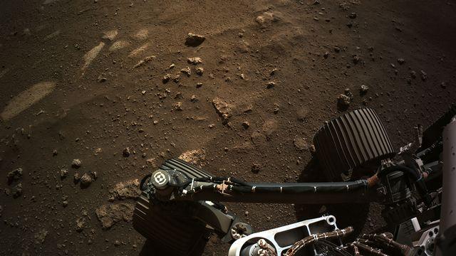 Le rover Perseverance sur la planète Mars. [HANDOUT / NASA / JPL-CALTECH - AFP]