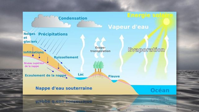 Cycle de l'eau [Astrid Parchet - Wikimedia]