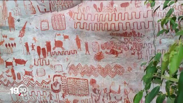 """""""La chapelle Sixtine de la préhistoire"""": 12 km de peintures murales datant de 12'000 ans sont visibles au cœur de l'Amazonie [RTS]"""