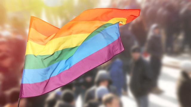 Drapeau LGBT (image d'illustration). [Africa Studio - Fotolia]