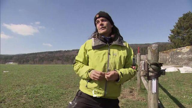 Entretien avec Jean-Marc Landry, spécialiste du loup en milieu pastoral [RTS]