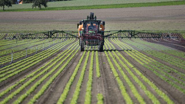 Un tracteur applique des pesticides sur des salades. [Christian Beutler - Keystone]