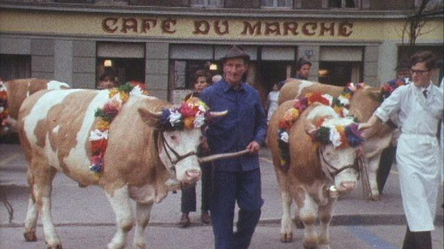 Cortège des boeufs de Pâques à Moudon [RTS]