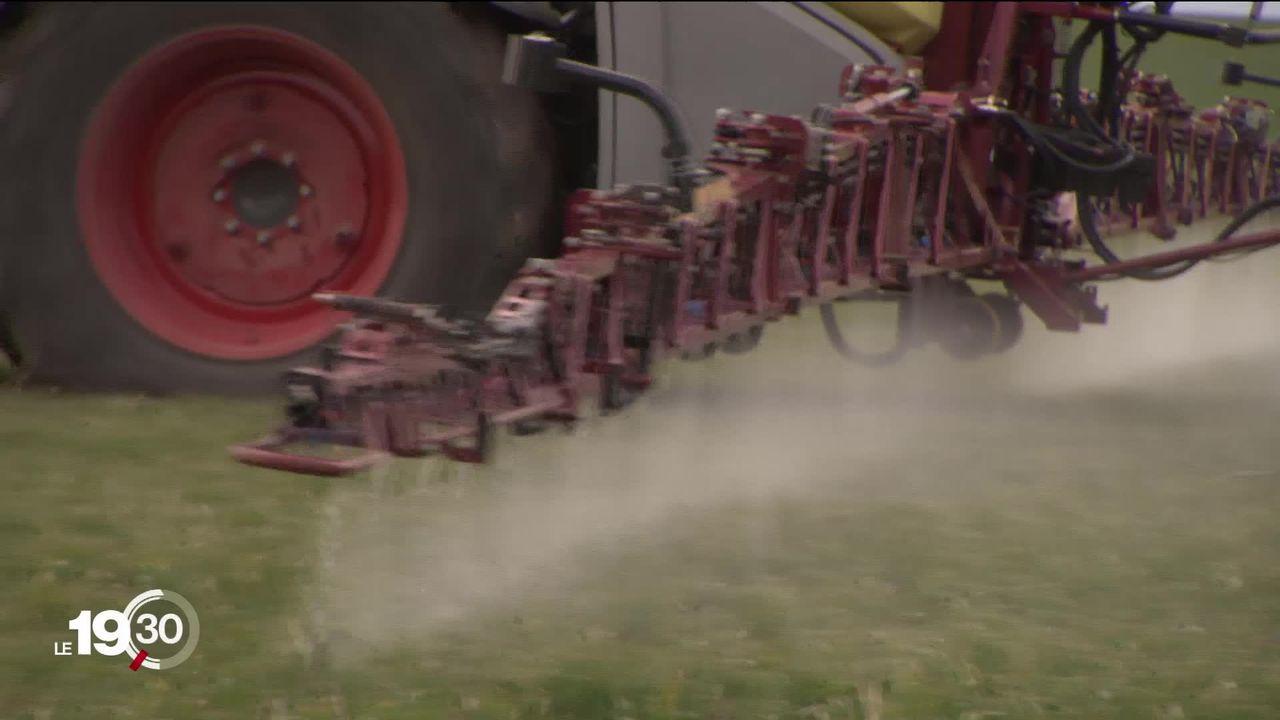 La campagne conte les pesticides de synthèse est lancée [RTS]