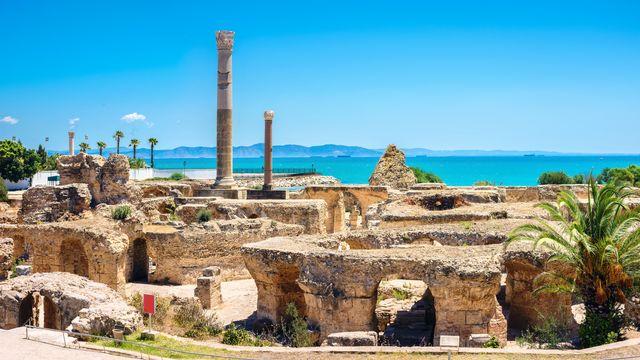Vue panoramique de l'ancienne Carthage, Tunisie, Afrique du Nord. [Bareta - Depositphotos]