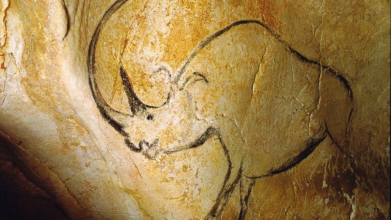Une peinture de rhinocéros dans la Grotte Chauvet, Ardèche, France. [Inocybe / French Wikipédia - Domaine public]