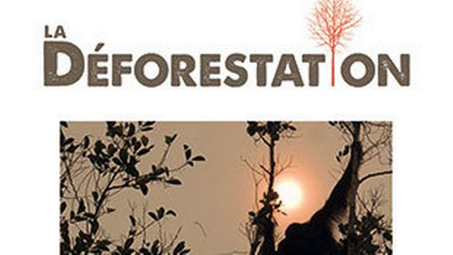"""La couverture de l'ouvrage """"La déforestation: essai sur un problème planétaire"""" de François Le Tacon aux éditions Quae. [quae.com]"""
