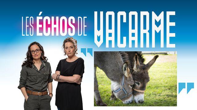 Les Echos de Vacarme: les animaux ont des choses à nous dire. [a4ndreas / Vacarme - Depositphotos / RTS]