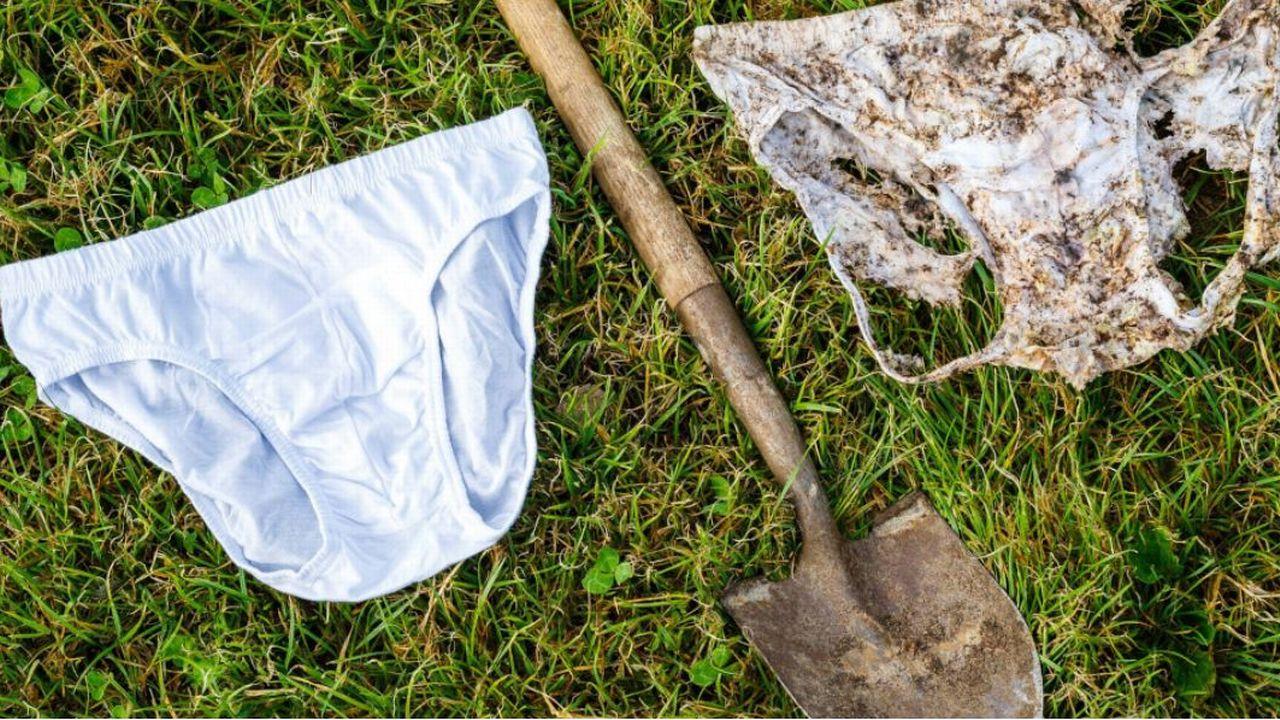 Plus la décomposition du slip est avancée, plus les organismes vivants dans le sol sont actifs et plus le sol est sain. [https://www.beweisstueck-unterhose.ch/fr/ - DR]