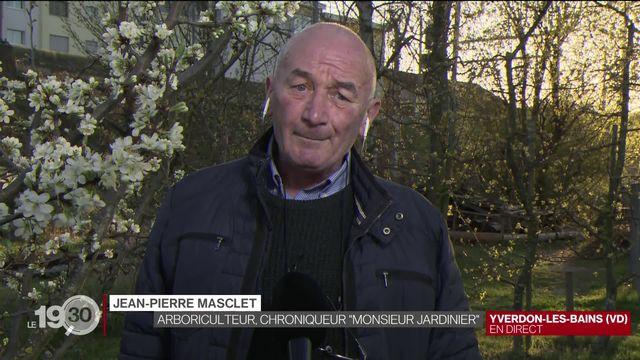 Les explications de Jean-Pierre Masclet, jardinier et chroniqueur à la RTS. [RTS]