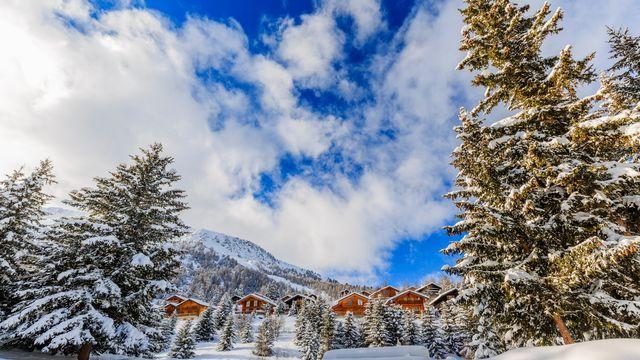 Paysage hivernal, arbres enneigés dans les Alpes suisses. [Gorilla - depositphotos]
