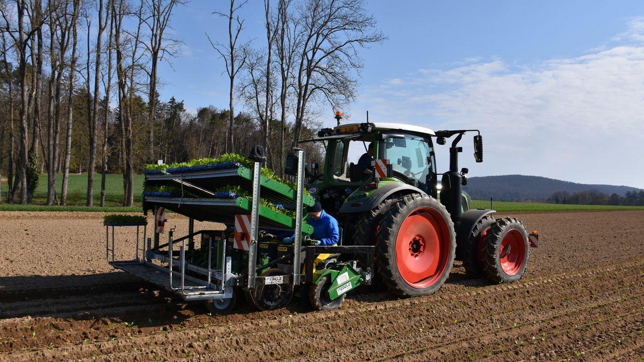 Planter au lieu de semer: une innovation dans la culture de la betterave sucrière. [Gaël Klein - RTS]