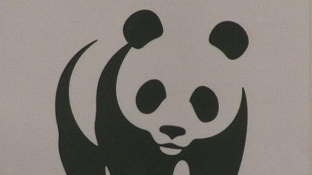 Le logo du WWF en 2008. [RTS]