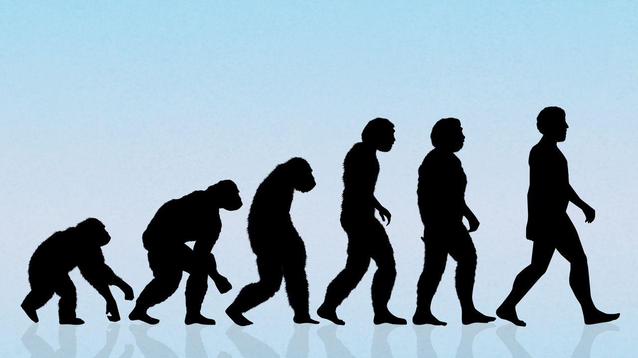 La rencontre entre Néandertaliens et Homo Sapiens. [adrenalina - depositphotos]
