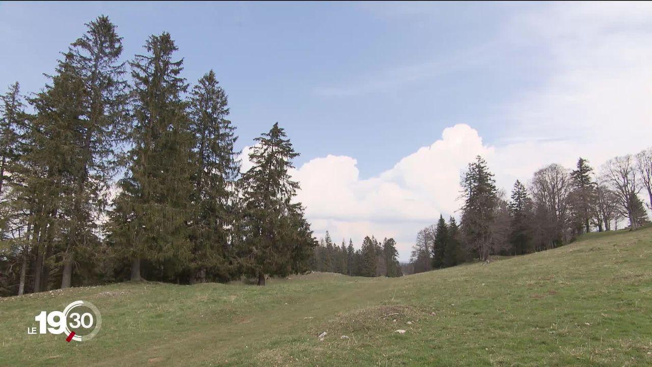 Le Tribunal fédéral a donné son feu vert au projet de parc éolien sur les hauteurs de Sainte-Croix [RTS]