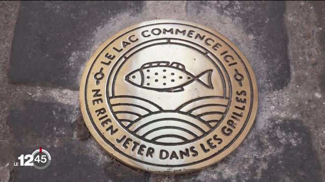 La ville de Neuchâtel et des associations tentent de gérer les déchets dans les grilles d'égouts. [RTS]