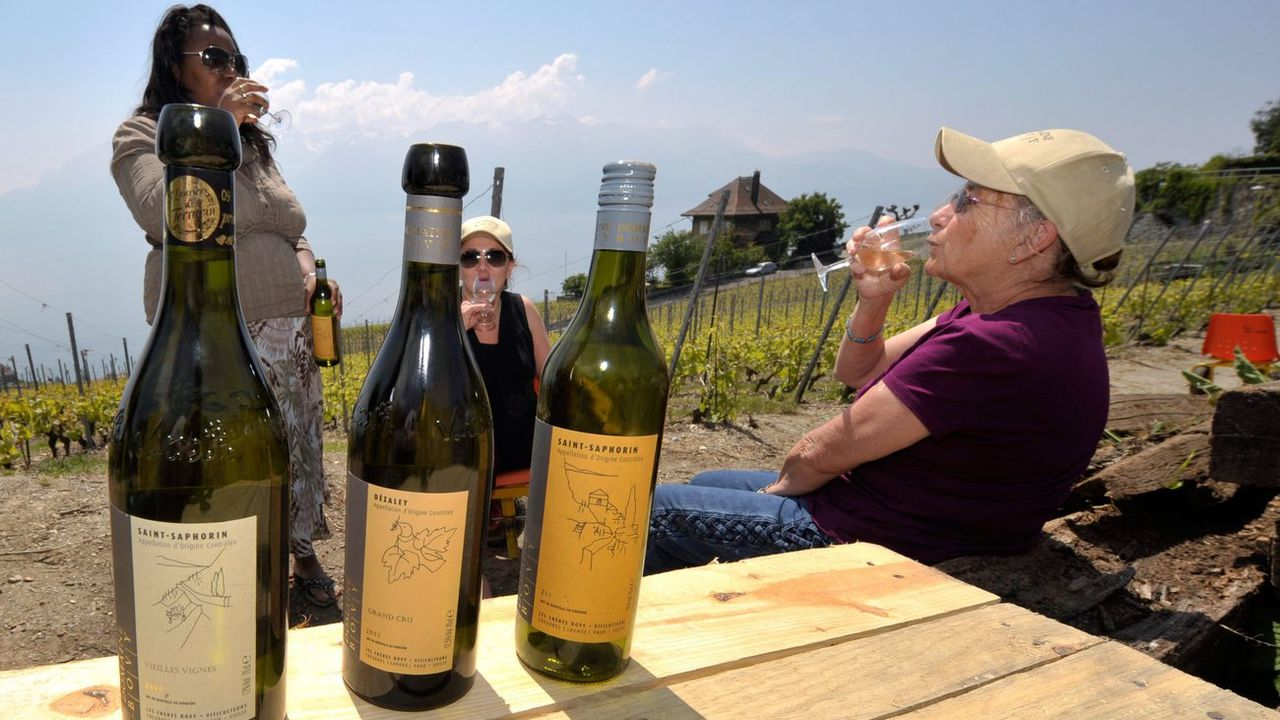 Malgré le recul de la consommation, les vins suisses gagnent des parts de marché. [Dominic Favre - Keystone]