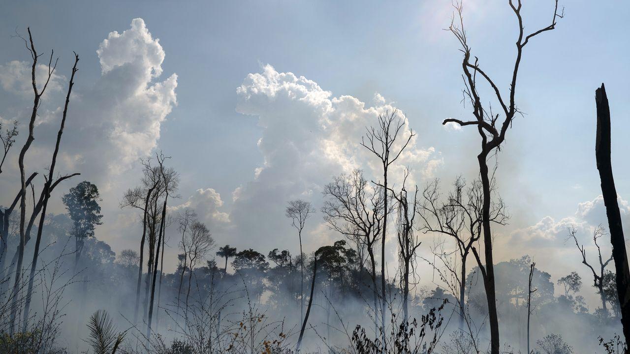 Des feux dans la forêt amazonienne brésilienne, le 25 août 2019 à Novo Progresso. [Leo Correa - AP/Keystone]