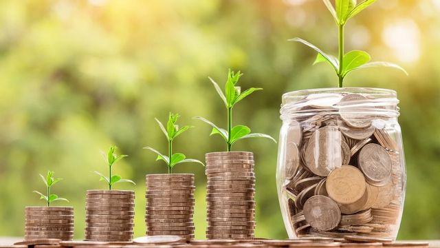 Finance et durabilité: des investissements qui bénéficient aussi à l'environnement? [Nattanan Kanchanaprat - Pixabay]