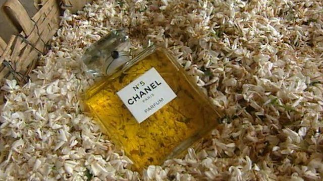 N° 5 de Chanel : un sacré numéro [RTS]
