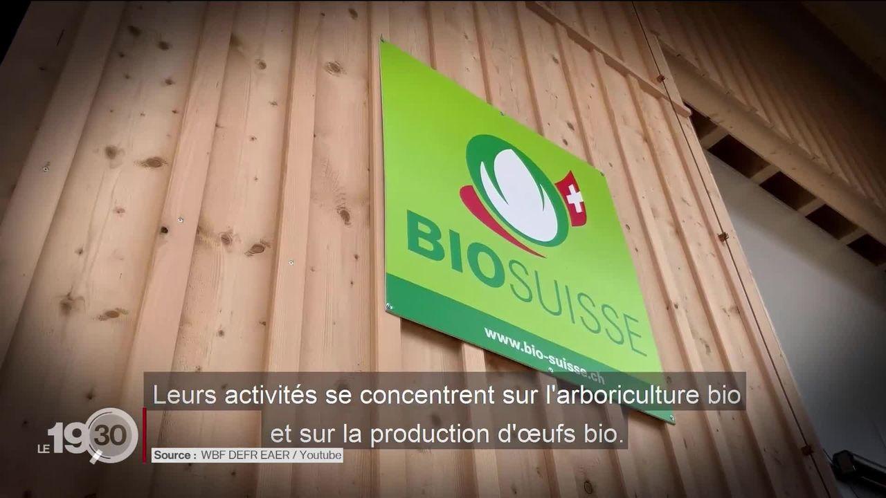 """Les partisans de l'initiative """"pour une Suisse sans pesticides"""" accusent la Confédération de tromper les électeurs [RTS]"""