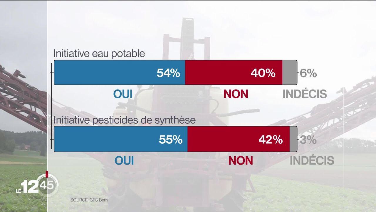Deux petits oui aux initiatives sur les pesticides et un soutien à la loi sur le CO2, selon un premier sondage SSR. [RTS]