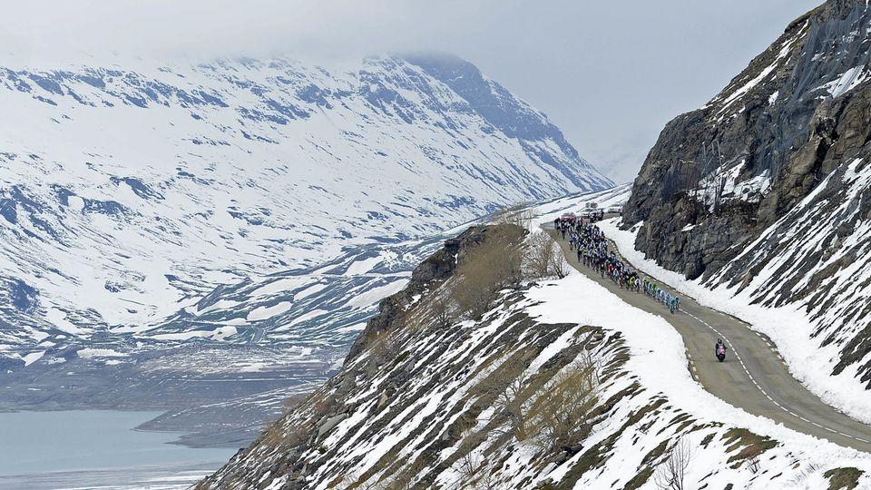 Cette année, six Suisses seront au départ du Giro. [Fabio Ferrari - Keystone]
