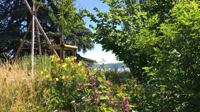 La forêt-jardin du parc de la Perle du Lac à Genève. [Association La Libellule (lalibellule.ch)]