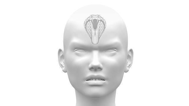 Le cerveau reptilien gèrerait nos comportements primaires comme manger, boire, se reproduire ou se mettre en colère. decade3d/Digital-Clipart Depositphotos [decade3d/Digital-Clipart - Depositphotos]
