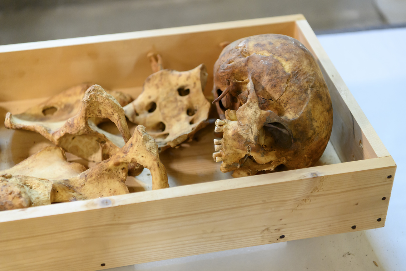 Un squelette d'homme découvert dans le tombeau de la reine Berthe