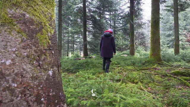 Les bains de forêt, source de bienfaits [RTS]