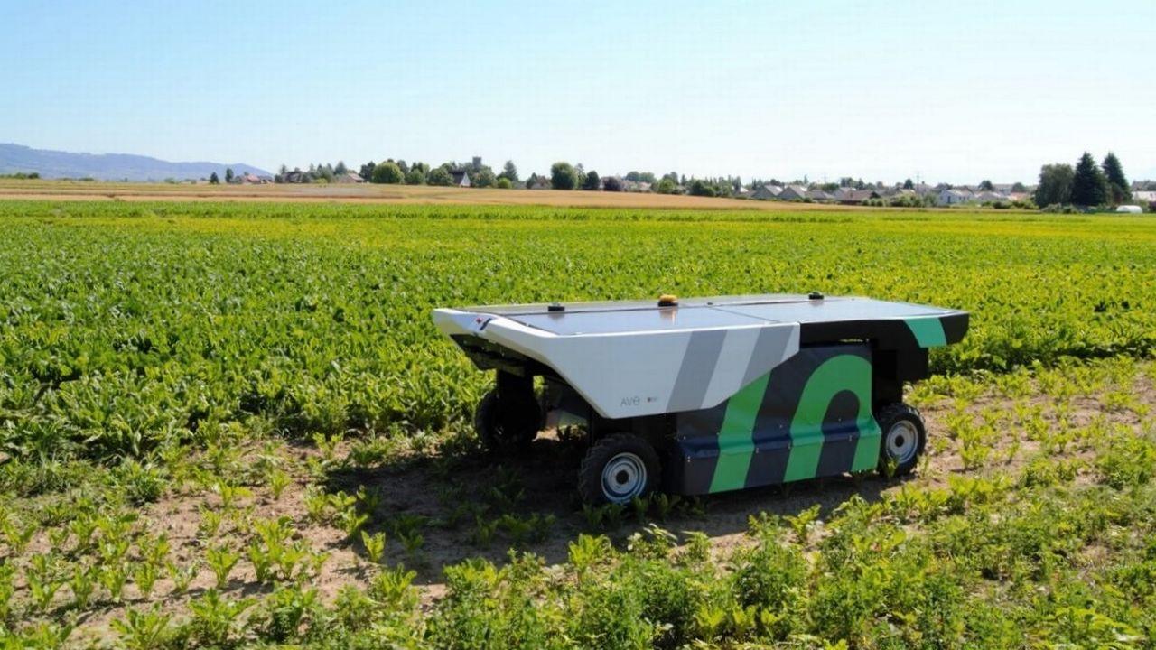 Nouvelles technologies agricoles: des robots pour désherber, une solution durable? [© Ecorobotix]