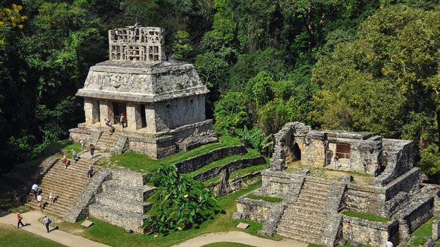 Ruines mayas à Palenque [MadrugadaVerde - Depositphotos]
