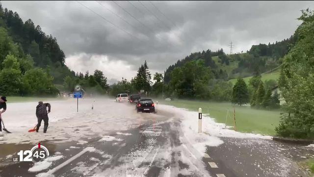 Le week-end s'est terminé avec de violents orages en Suisse. Le canton de Fribourg a particulièrement  été touché. [RTS]