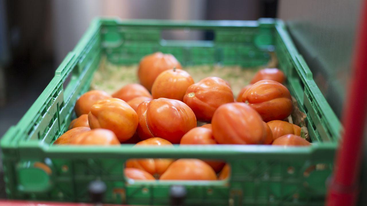 Des dizaines de tonnes de fruits et légumes ont été détruites ces derniers mois dans la région d'Yverdon-les-Bains. [Gaetan Bally - Keystone]