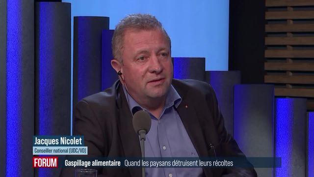 Quand les paysans détruisent leurs récoltes faute d'acheteurs : interview de Jacques Nicolet [RTS]