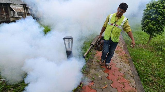 Le paludisme a été éradiqué de Chine après 70 ans de lutte (image d'illustration). [Biju Boro - AFP]