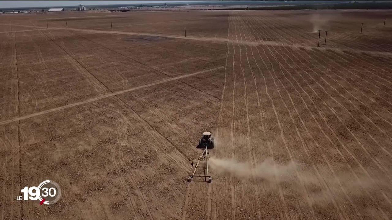 La Californie subit une importante sécheresse, avec des risques d'incendies et des conséquences économiques annoncées [RTS]