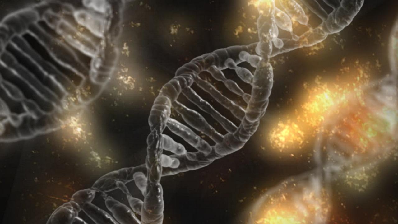 Des chercheurs genevois ont découvert une protéine capable de transmettre des informations à la génération suivante. (Image prétexte) [Pixabay]